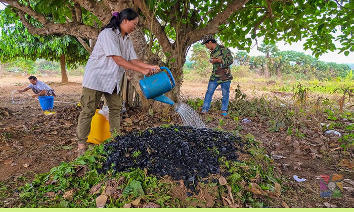 Biyokömür (biocahar) toprağa hayat veriyor