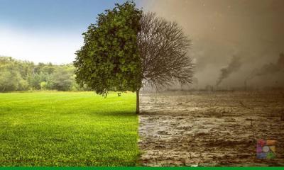 Türkiye'de çevre kirliliği nedeniyle yılda yaklaşık 58 bin kişi ölüyor