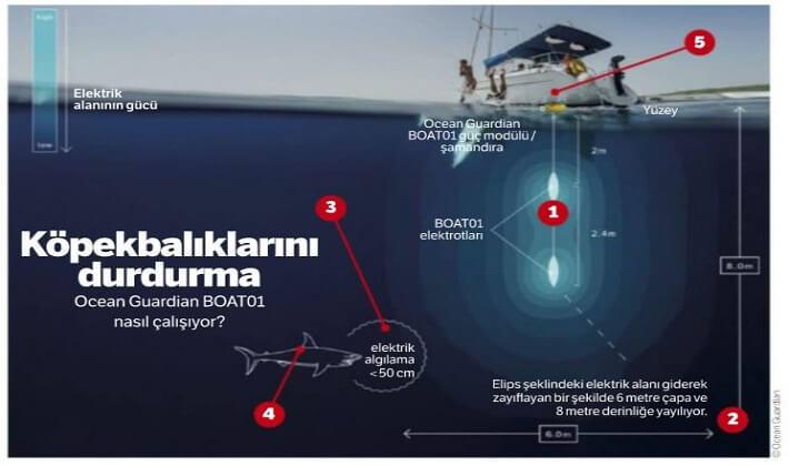 Ocean Guardian in Shark Shield teknolojisi,