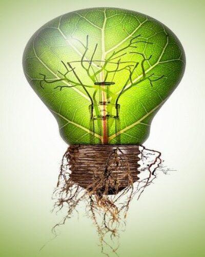 Yeşil enerji nedir? Geleceğin yakıtları ne olacak?