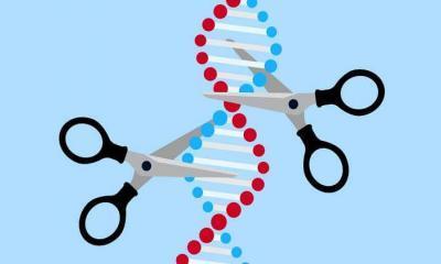 CRISPR tedavisi ile körlüğe karşı yeni bir umut