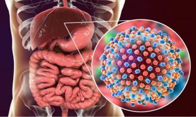 Hepatit C virüsü nedir? Hepatit C virüsünü ve tedavisini kim buldu?