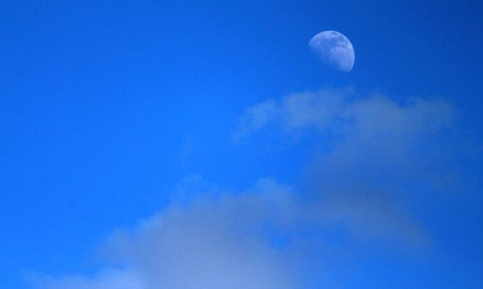 Cehennem gezegen Venüs'de yaşam mümkün mü?