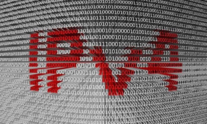 IPv4 nedir? IPV4 Adres Yapısı ve Alt Ağ Maskesi nedir? | Network Eğitimleri