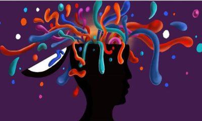 Zeka nedir? Adaptif zeka nedir? Adaptif zekanın bileşenleri