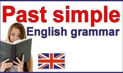 Simple Past Tense ile ilgili örnek cümleler